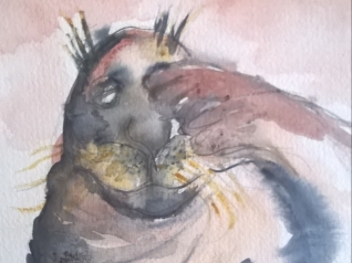 Søvnig sæl (Motivstørrelse 18x18)